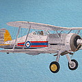 Gloster Gladiator by Ted Denyer