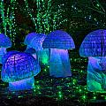 Glowing Mushrooms by Cindy Archbell