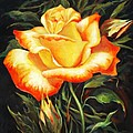 Glowing Rose 2 by Ekaterina Mortensen