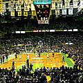 Go Celtics by David Schneider