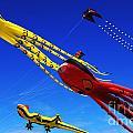 Go Fly A Kite 7 by Bob Christopher