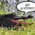 Go Gators Greeting Card by Al Powell Photography USA