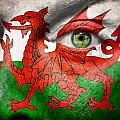 Go Wales by Semmick Photo