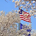 God Bless America March 2014 by Matthew Seufer