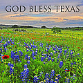 God Bless Texas  by Lynn Bauer