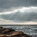 God Rays by George Buxbaum