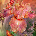 Goddess Of Spring by Carol Cavalaris