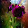 Goddess Of The Rainbow by Carol Cavalaris