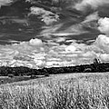 God's Country In Monochrome by Guy Whiteley