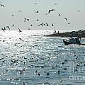 Going Fishing by Joan Wallner