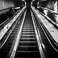 Going Up by Johnny Lam