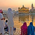 Gold Everywhere by Devinder Sangha
