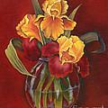 Gold N Red Iris by Doreta Y Boyd