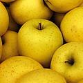 Golden Apples by Joseph Skompski