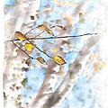 Golden Birch by Caitlyn  Grasso