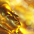Golden Buddha by Delphimages Photo Creations