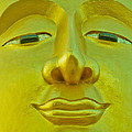 Golden Buddha Smile by Allan Rufus