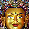 Golden Buddha by Steve Harrington