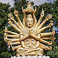 Golden Buddha With Many Arms by Sophie McAulay