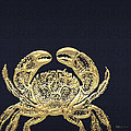 Golden Crab On Charcoal Black by Serge Averbukh