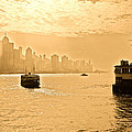 Golden Day by Richard WAN