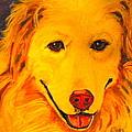 Golden by Debi Starr
