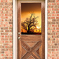 Golden Doorway Window View by James BO Insogna