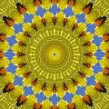 Golden Everlasting Daisy Mandala by Ben Bassey