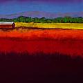 Golden Field by David Patterson