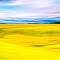 Golden Fields Of England - My Canterbury Tale by Mark E Tisdale
