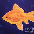 Golden Fish by Graciela Castro