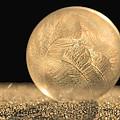 Golden Frozen Bubble by Kelvin Taylor