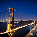 Golden Gate Bridge At Night by Jim And Emily Bush