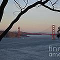 Golden Gate Bridge - San Francisco California by S Mykel Photography