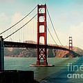 Golden Gate Bridge by Sylvia Cook