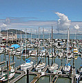 Golden Gate Marina 0960 by Guy Whiteley