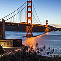 Golden Gate Night by Kate Brown