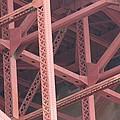Golden Gate's Skeleton by Robert Phelan