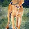 Golden Girl by Lisa Pope