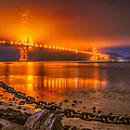 Golden Golden Gate Bridge  by Michael Filippoff