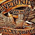 Golden Harley Davidson Logo by Chris Berry