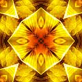 Golden Harmony - 3 by Shawna Rowe