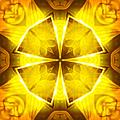 Golden Harmony - 4 by Shawna Rowe
