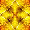Golden Harmony  by Shawna Rowe