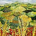 Golden Hedge by Allan P Friedlander