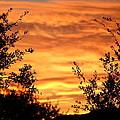 Golden Hour Sunset by Gregg S