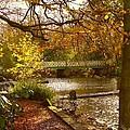 Golden Lake At Botanical Gardens by Joan-Violet Stretch