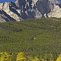 Golden Longs Peak View by James BO Insogna