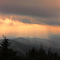 Golden Mountain Rays by Shari Jardina