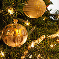 Golden Ornaments by Cathy Smith